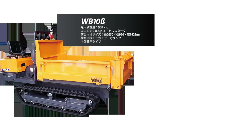 WB10b